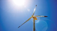 Німеччина побила рекорд з виробництва відновлюваної енергії