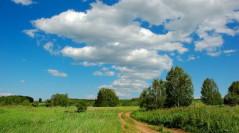 ПРОЕКТ  Дніпропетровської обласної комплексної програми (стратегії)   екологічної безпеки та запобігання змінам клімату   на 2016 – 2025 роки