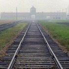 International Holocaust Remembrance Day. Never again