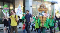 Єврокомісія вирішить питання вирощування ГМ-культур